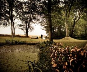 bryllupsfoto_i_skoven