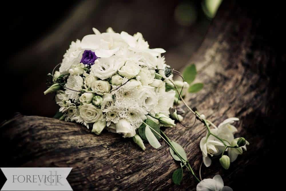 Bryllupsfoto Kolle Kolle