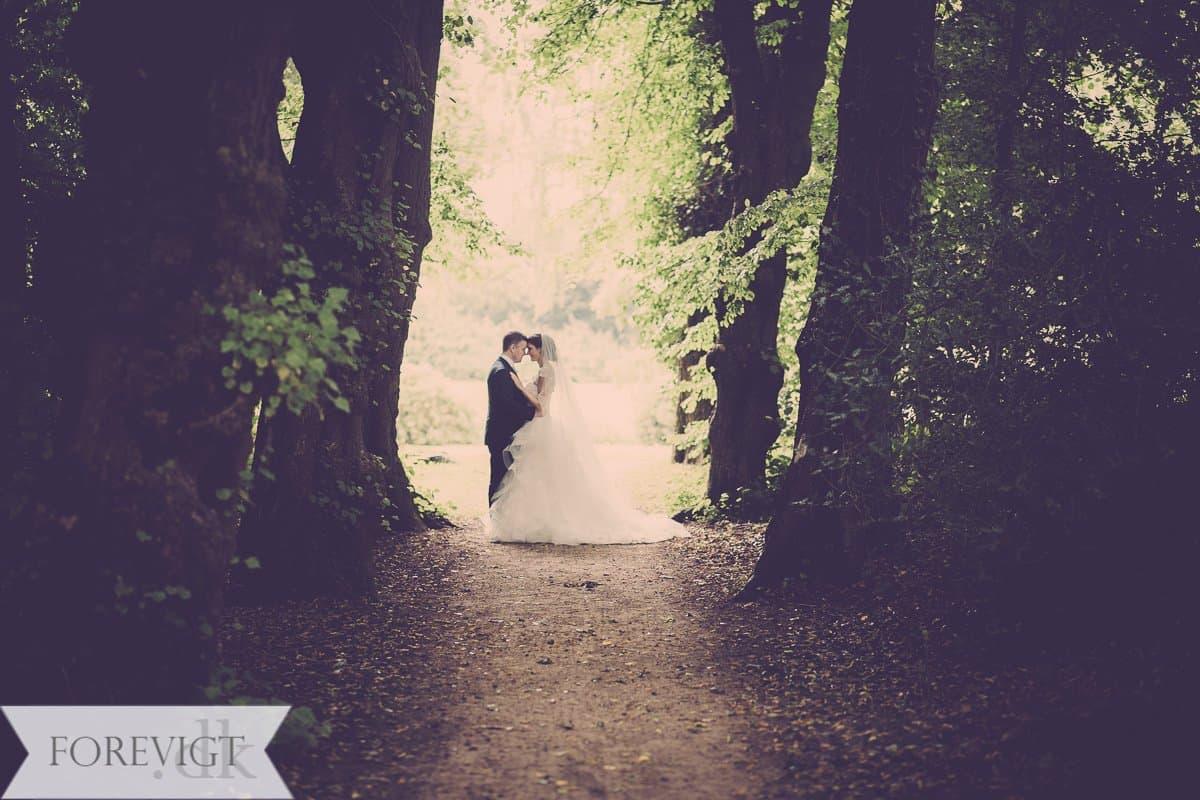 Bryllupsfotograf Langeland